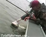 Sturgeon fishing video on the Columbia River near Astoria, Oregon.